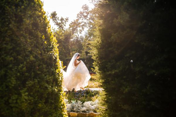 0257-Silvia&Nikolay-Wedding2019.jpg